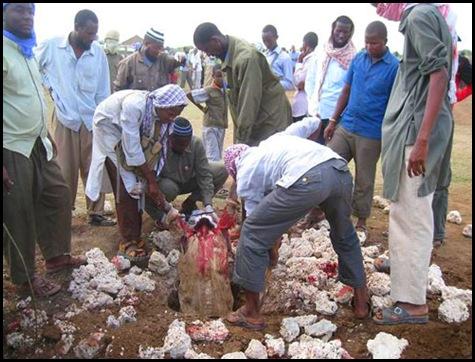 Xisbiga Asmara