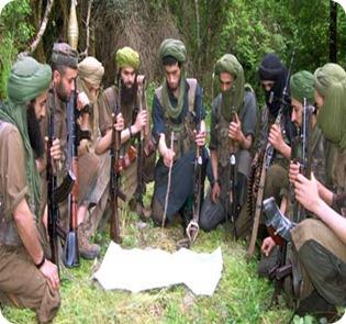 Al-Qaida-